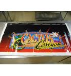 Cactus Canyon Pinball Machine Game Cabinet Artwork 2 piece Decal Set Left and Right NOS #44