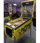 CACTUS JACK'S Pinball Game Machine For Sale by Gottlieb - A Good Old Time!