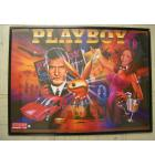 Playboy Pinball Machine Game Translite Backbox Artwork - Stern - for sale