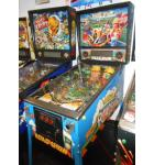RED & TED'S ROAD SHOW Pinball Machine Game for sale
