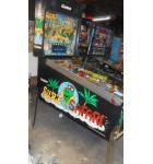 SURF 'N SAFARI Pinball Game Machine For Sale by Gottlieb