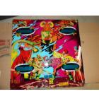 SINBAD Pinball Machine Game Backglass Backbox Artwork